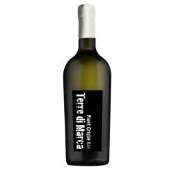 Вино біле сухе Terre di Marca 'Pinot Grigio' органічне 0,75 л